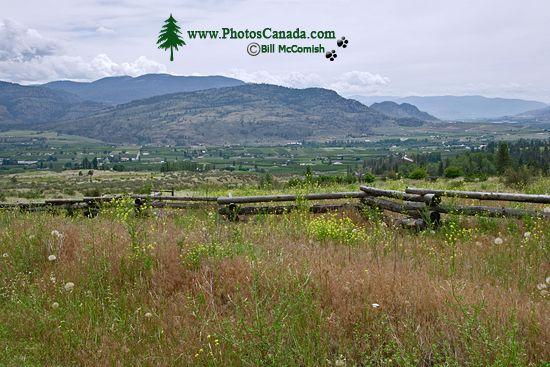 Oliver Wine Region, British Columbia CM11-001