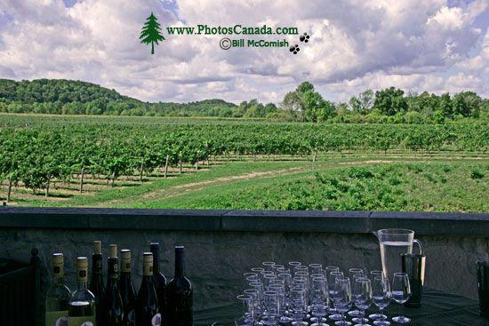 Ontario Wine Region, Southern Ontario, Canada CM-1201