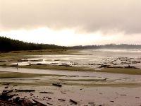 Pacific Rim National Park, British Columbia, Canada 08