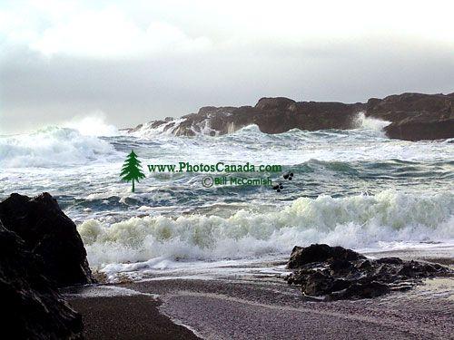 Pacific Rim National Park, British Columbia, Canada 02