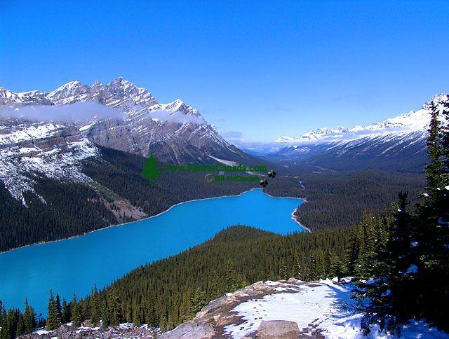 Peyto Lake, Icefields Parkway, Jasper National Park, Alberta, Canada 25