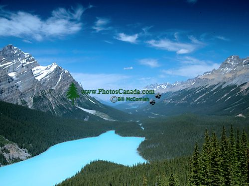 Peyto Lake, Icefields Parkway, Banff National Park, Alberta, Canada CM11-02