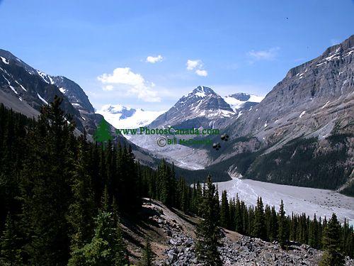 Peyto Glacier, Icefields Parkway, Banff National Park, Alberta, Canada CM11-03