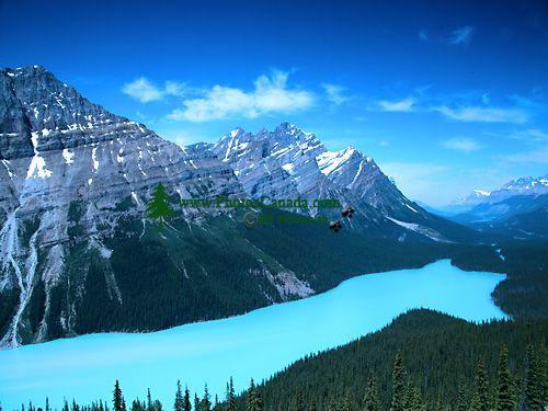 Peyto Lake, Icefields Parkway, Banff National Park, Alberta, Canada CM11-04