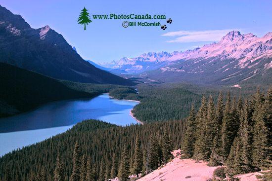 Peyto Lake, Spring 2009, Icefields Parkway, Banff National Park, Alberta, Canada CM11-09