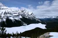 Peyto Lake, Spring 2009,  Icefields Parkway, Banff National Park, Alberta, Canada CM11-05