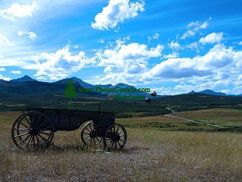 Old Farm Wagon, Southern Alberta, Canada 03