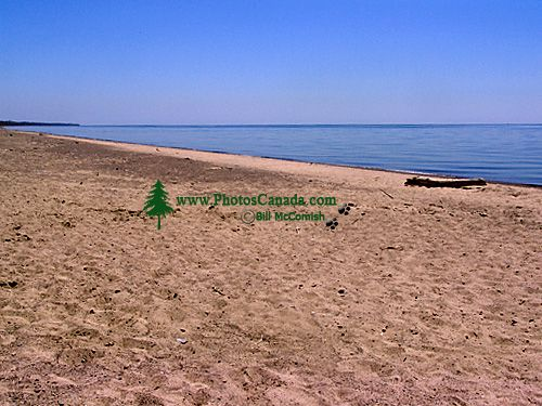 Point Pelee National Park, Ontario, Canada 03