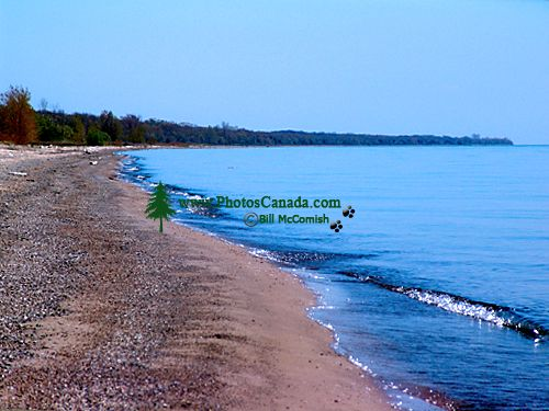 Point Pelee National Park, Ontario, Canada 01