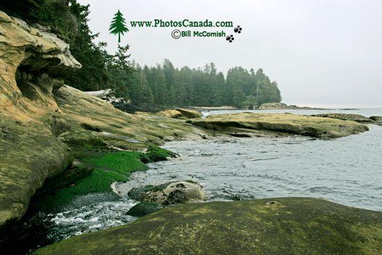 Port Renfrew Botanical Beach, Vancouver Island CM11-006