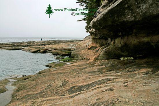Port Renfrew Botanical Beach, Vancouver Island CM11-007
