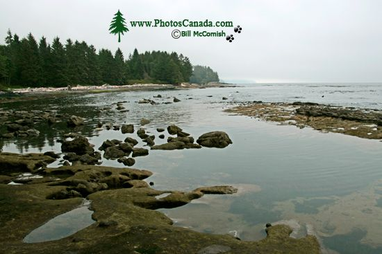 port_renfrew_botanical_beach_009.jpg