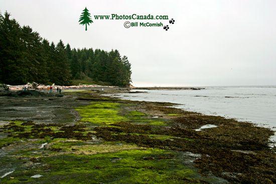 Port Renfrew Botanical Beach, Vancouver Island CM11-001
