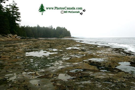 Port Renfrew Botanical Beach, Vancouver Island CM11-003