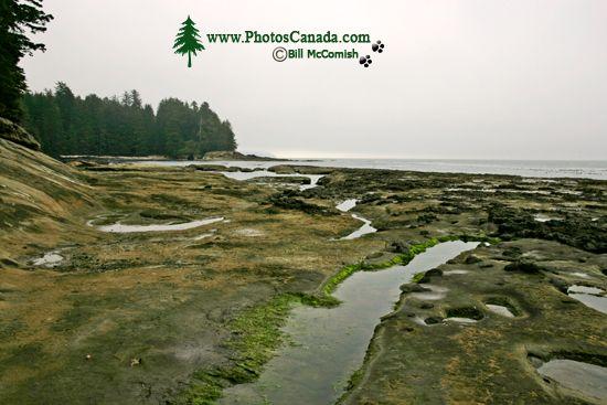 Port Renfrew Botanical Beach, Vancouver Island CM11-004