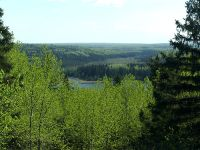 Boreal Forest, Prince Albert National Park, Saskatchewan, Canada 04