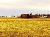 Central Island Farm, Prince Edward Island, Canada  10