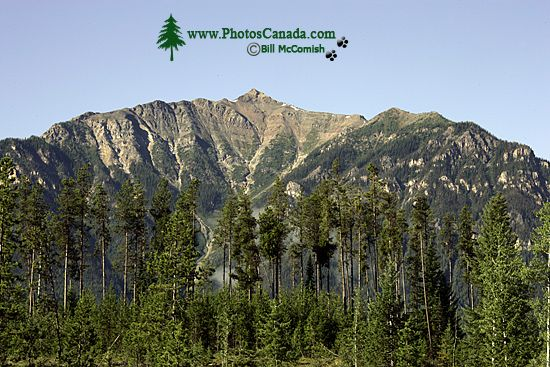 Purcell Mountains, South East British Columbia, Canada CM11-003