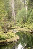 Queen Charlotte Islands Photos, Haida Gwaii, British Columbia, Canada CM11-04