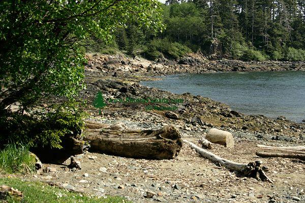Rennell Sound, Queen Charlotte Islands, Haida Gwaii, British Columbia, Canada CM11-02