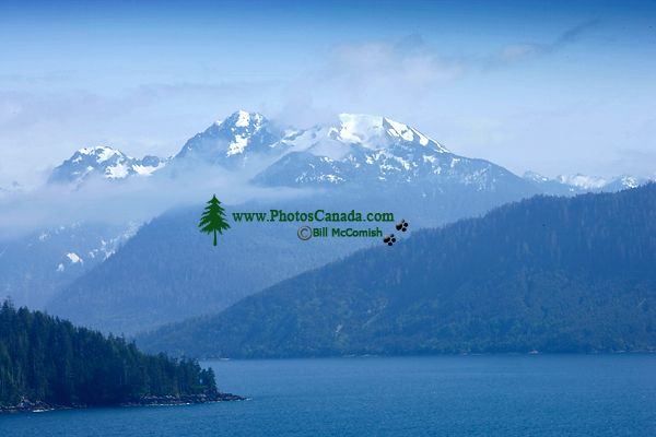 Rennell Sound, Queen Charlotte Islands, Haida Gwaii, British Columbia, Canada CM11-05