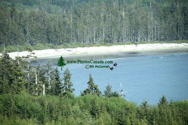 Rennell Sound, Bonanza Beach, Queen Charlotte Islands, Haida Gwaii, British Columbia, Canada CM11-06