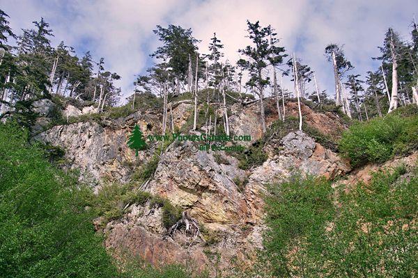 Rennell Sound, Queen Charlotte Islands, Haida Gwaii, British Columbia, Canada CM11-09