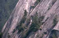 Rock Climbers, Stawamus Chief, Squamish, British Columbia, Canada CM11-09