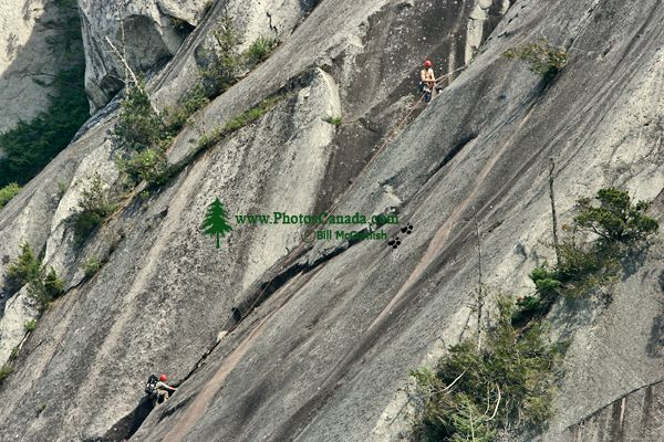 Rock Climbers, Stawamus Chief, Squamish, British Columbia, Canada CM11-03