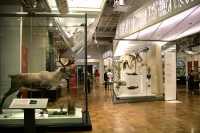 Royal Ontario Museum, (ROM), Toronto, Ontario CM11-013