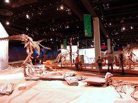 Royal Tyrrell Museum, Drumheller, Alberta, Canada 05