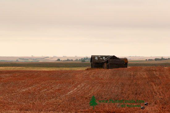 Abandoned Farmhouse, Saskatchewan, Canada CMX-002