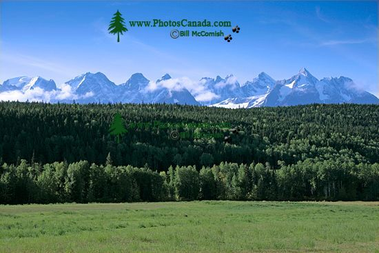 Seven Sisters Mountain Range, British Columbia, Canada, CM11-003