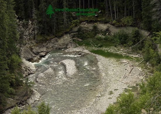 Whiteswan Park, South East Kootenay Region, British Columbia, Canada CM11-003