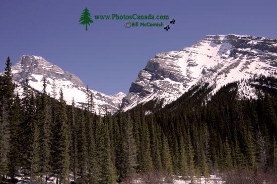 Spray Lakes Park, Kananaskis Country, Alberta, Canada CM11-001
