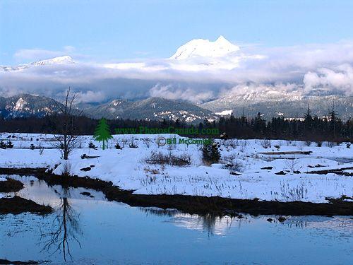 Squamish Estuary, British Columbia, Canada  05