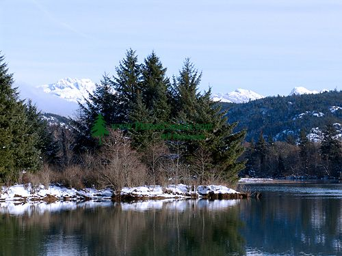 Squamish Estuary, British Columbia, Canada  03