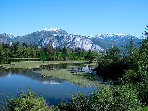 Squamish Estuary, British Columbia, Canada 09