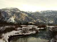 Squamish Estuary, British Columbia, Canada 12