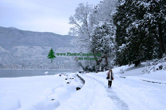Stanley Park Seawall, Winter 2008, Vancouver, British Columbia, Canada CM11-09