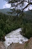 Highlight for Album: Stein Valley Provincial Park Photos, Texas Creek Road, British Columbia Stock Photos