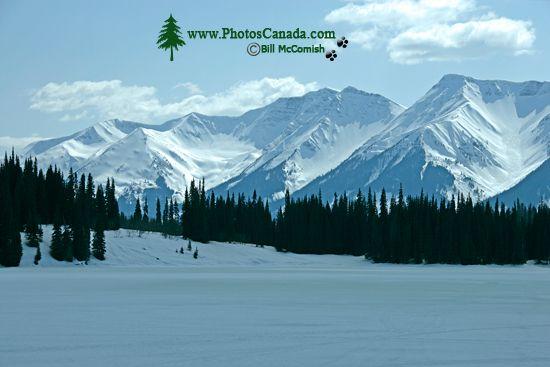 Along Cassiar Highway 2009, Northern British Columbia, Canada CM11-03