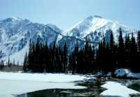 Along Cassiar Highway 2009, Northern British Columbia, Canada CM11-04
