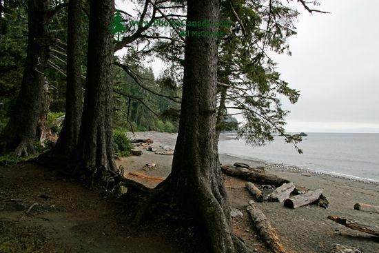 Sombro Beach, Vancouver Island CM11-003