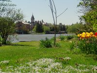 Highlight for Album: Stratford Ontario Photos, Ontario Stock Photos