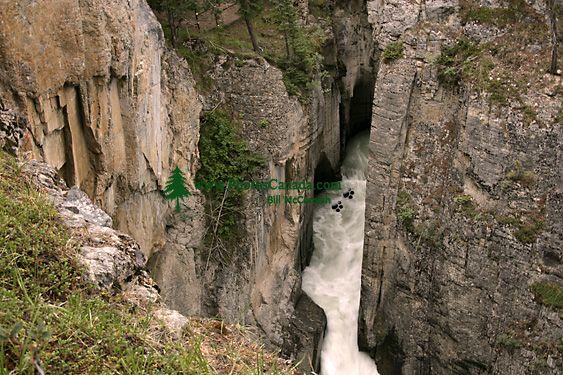 Sunwapta Falls, Icefields Parkway, Jasper National Park, Canada CM11-05