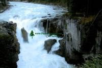 Highlight for Album: Sunwapta Falls Photos, Icefields Parkway Photos, Jasper National Park of Canada Photos, Alberta, Canada, Canadian Rockies, Canadian National Parks Stock Photos