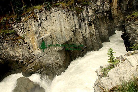 Sunwapta Falls, Icefields Parkway, Jasper National Park, Canada CM11-01