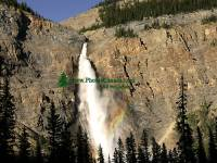 Highlight for Album: Takakkaw Falls, Yoho National Park, British Columbia, Canada