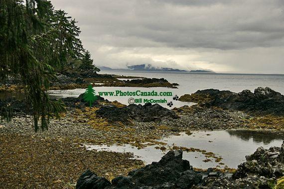 Tanu, T'aanuu Lnagaay, Laskeek Bay, Haida Heritage Site, Gwaii Haanas National Park,   British Columbia, Canada CM11-03